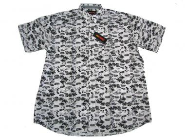Hawai-Hemd kurzarm in Übergröße